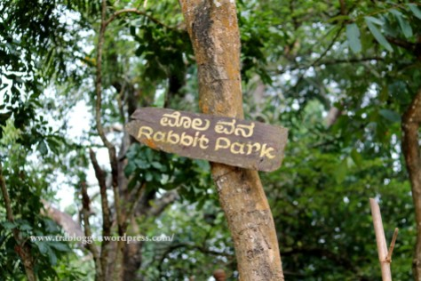 rabbit park, nisargadhama, coorg