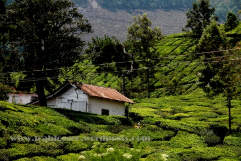 Munnar, the name is enough