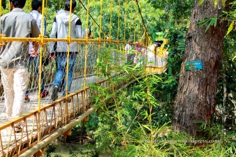 Nisargadhama hanging bridge coorg