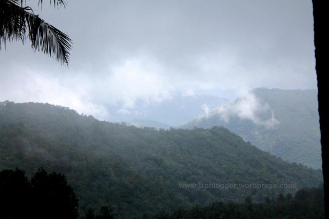 Fog Filled Beauty