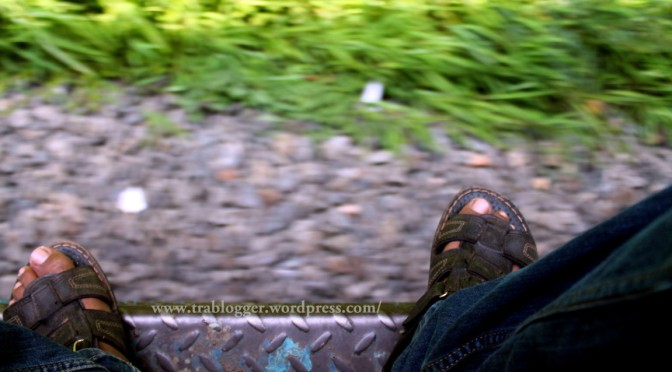Travel Diary | Day 1 : The day of Train Journeys (contd)