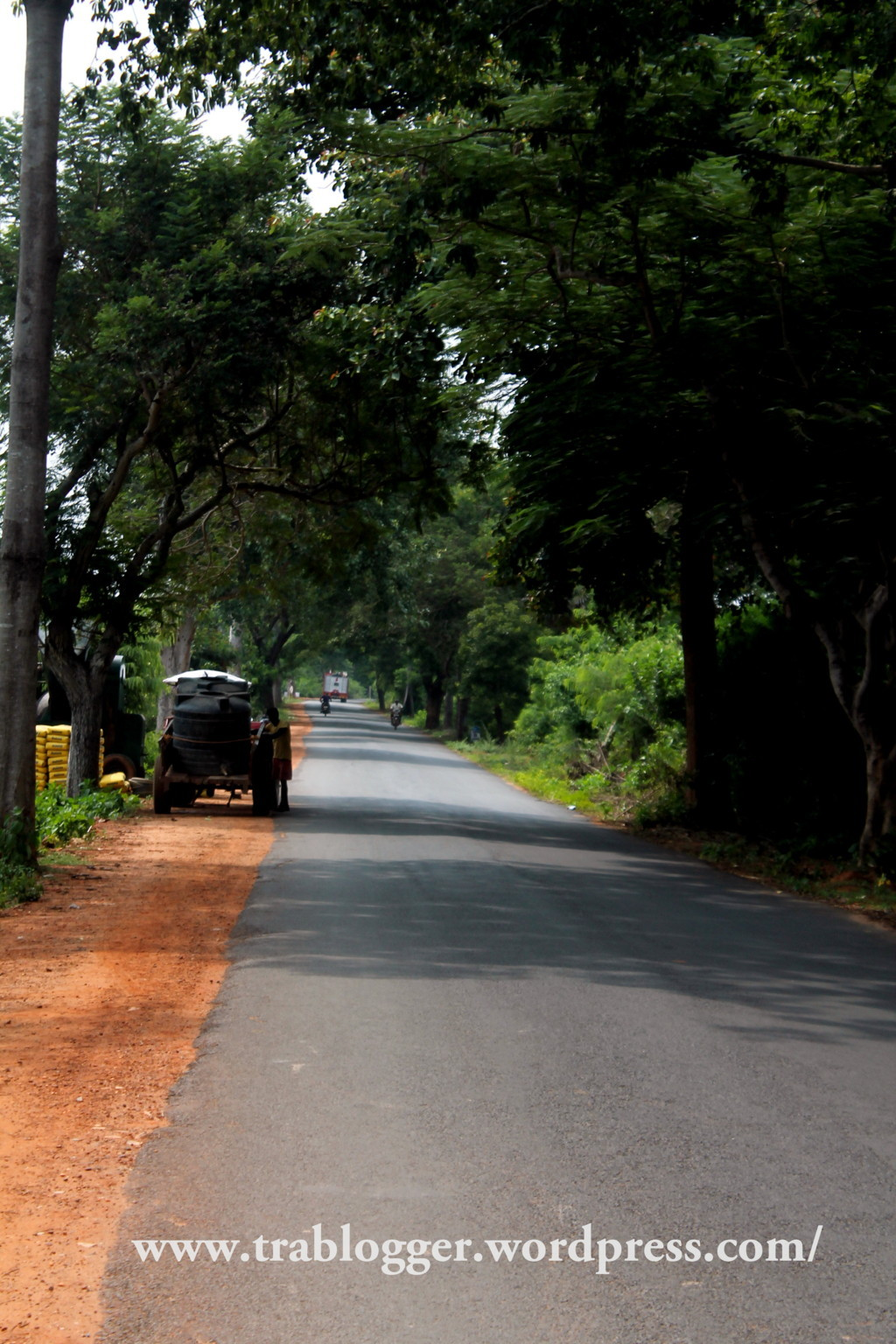 The Auroville Main road