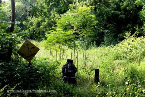 somewhere in Auroville