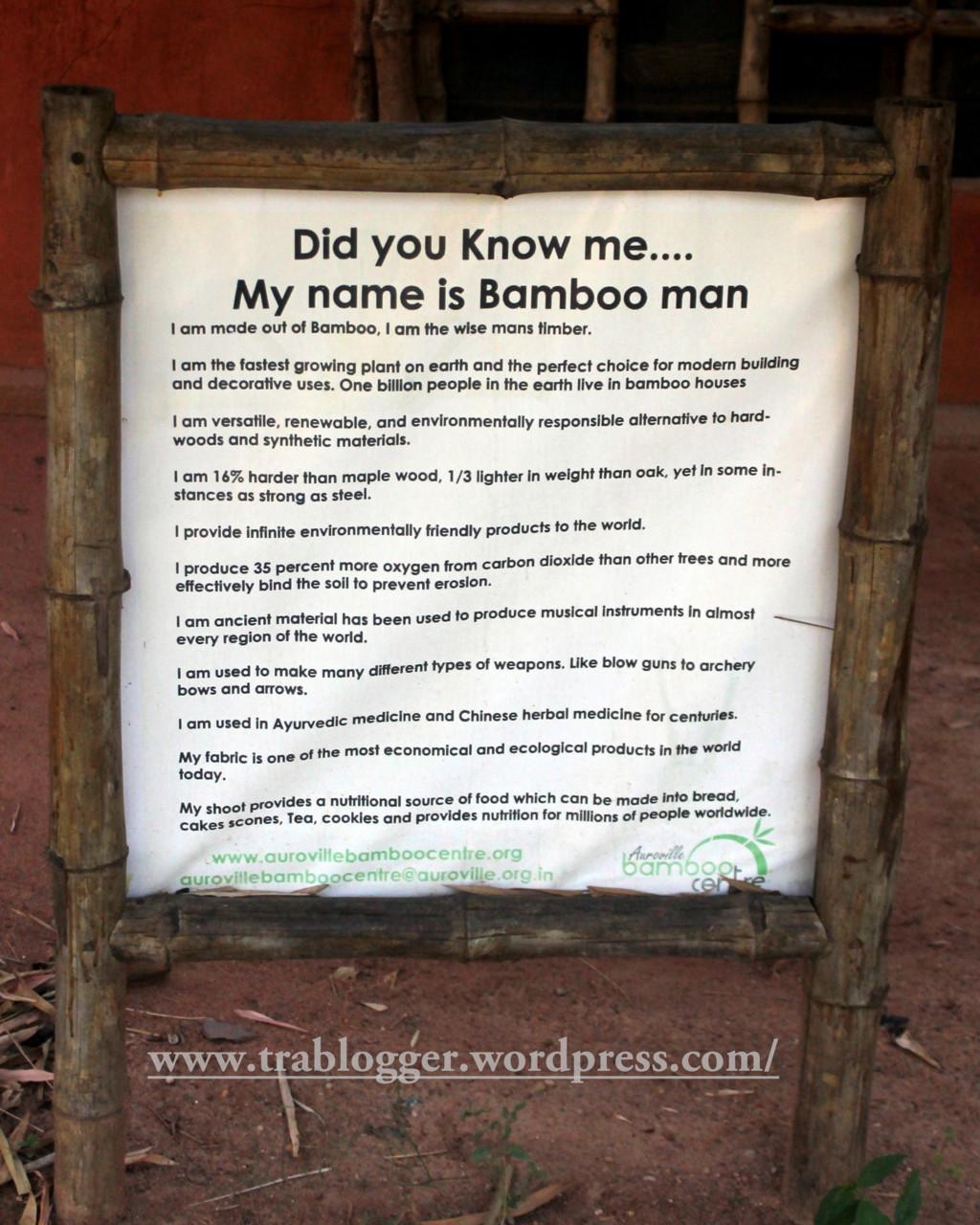 The Bamboo man