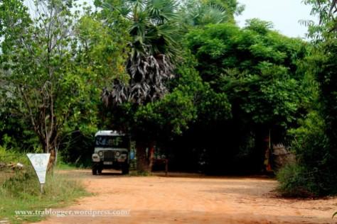 Entrance to Sadhana forest