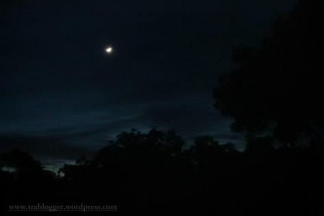 Sickle moon night