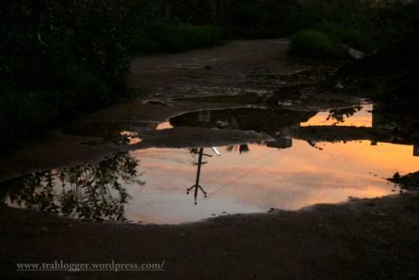 Blushing puddle