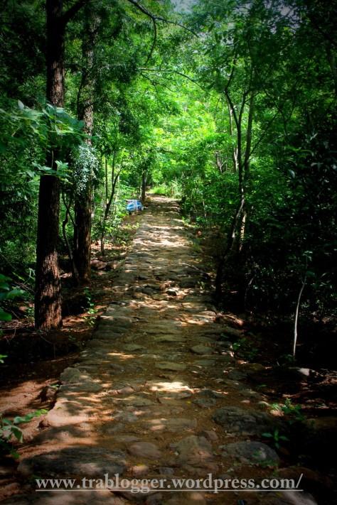 oh path, lead me forward