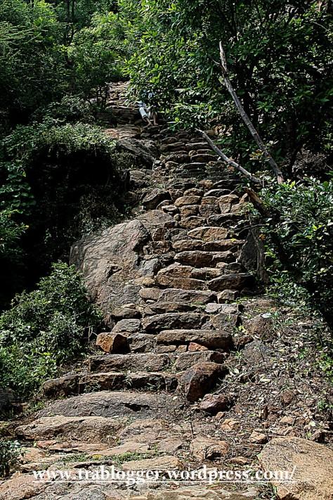 The steps from Skanda ashram towards the cave