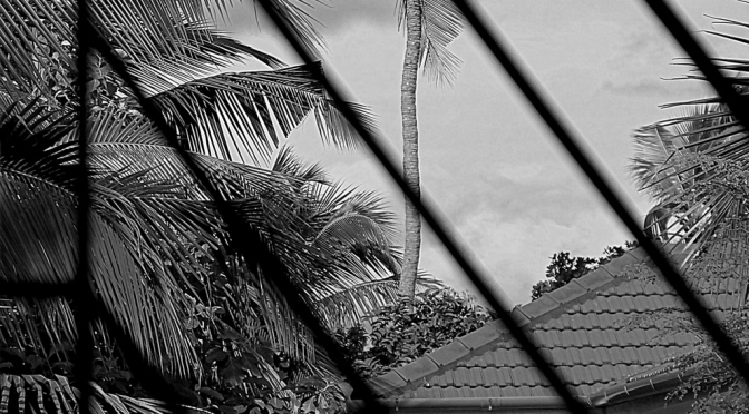 Monday Monochrome : Voyeur Neighbour