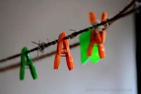 Mundane Monday : clothesline