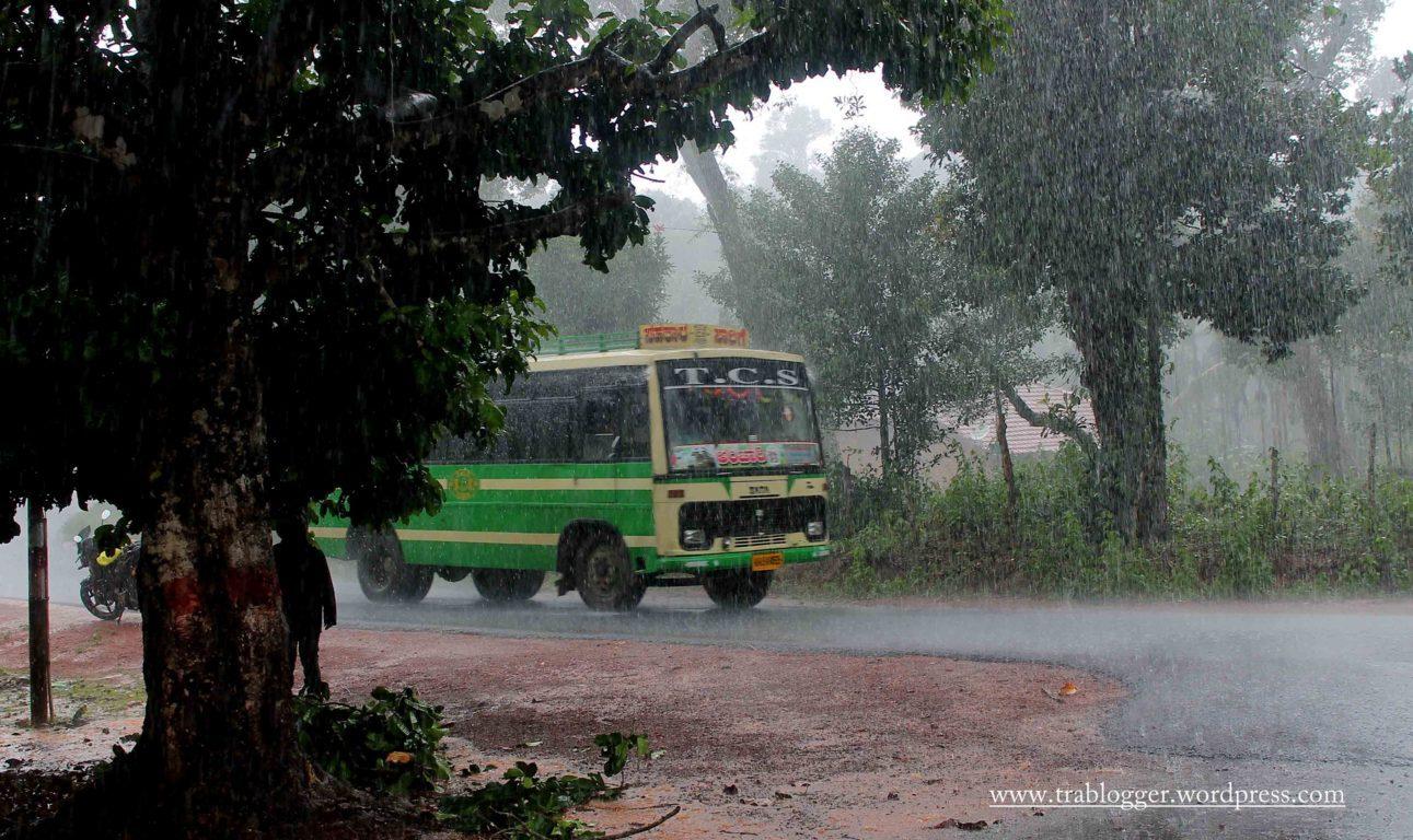 First rain in Agumbe
