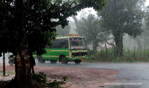 First rain in Agumbe