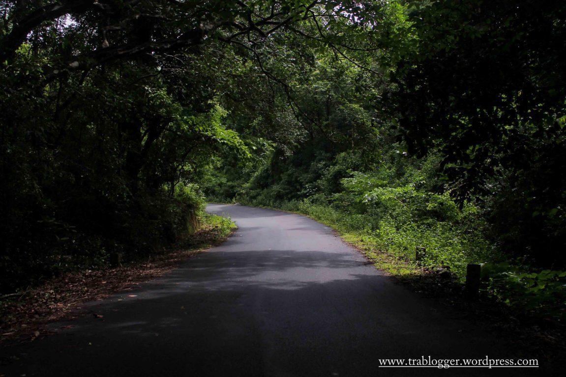 The lovely roads