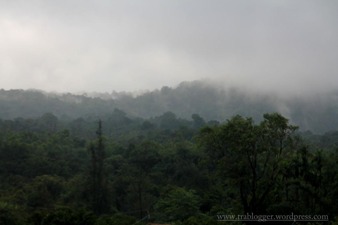 Agumbe Morning