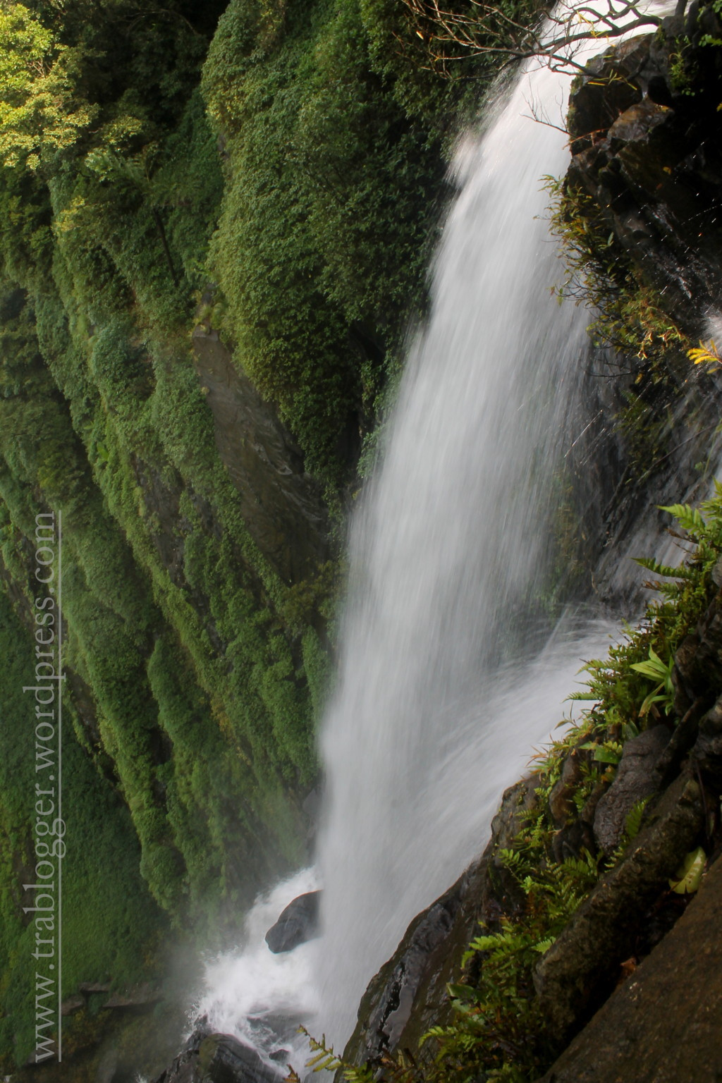And Some more The Gorgeous Onake Abbi falls