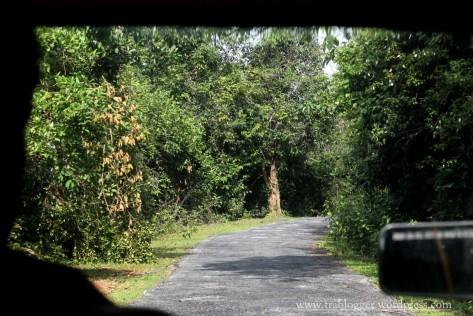Road to Kundadri