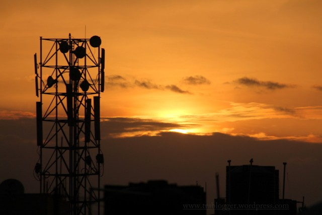Golden hour silhouette